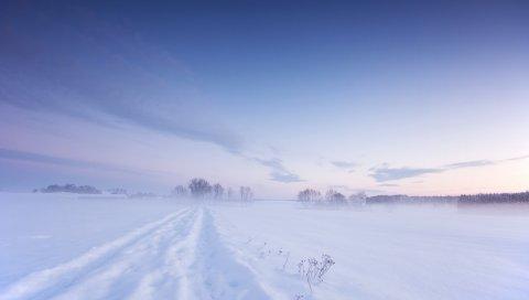снег, зима, поле