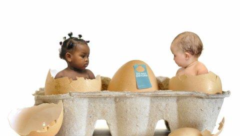 Дети, яйца, раковина