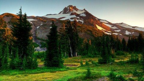 горы, деревья, ели, природа, пейзаж