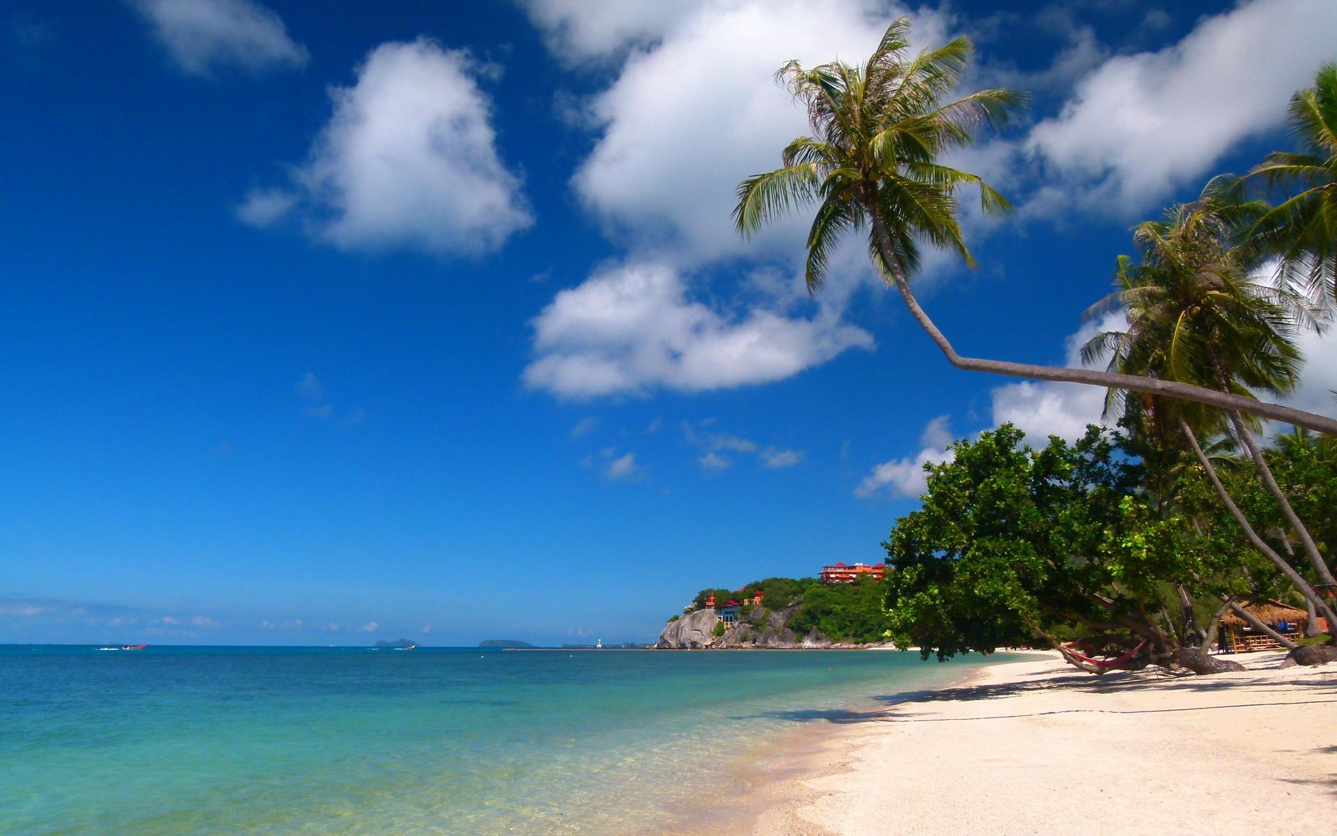 Картинки тропики, море, песок, пальмы фото и обои на рабочий стол