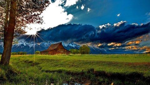 трава, деревья, поле, река, небо, облака, строительство
