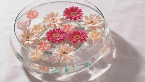 цветы, ванна, яркий, стекло