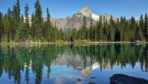 горы, небо, деревья, лето, отражение