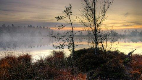 озеро, закат, туман,дерева, пейзаж