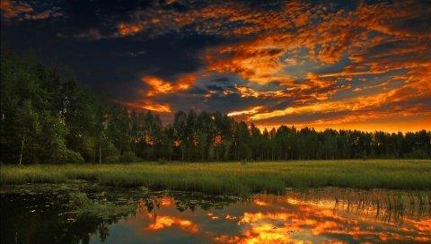 озеро, небо, трава, вечер