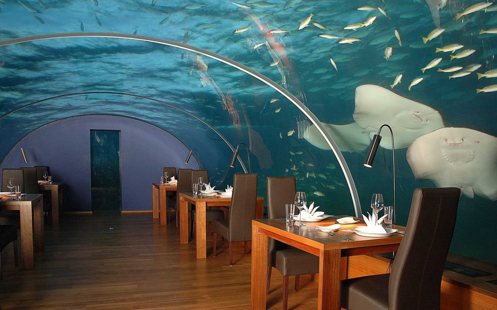 сайте подводный ресторан в москве фото тонкостях
