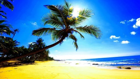 пляж, песок, пальмы, солнце, блики, океан, тропики