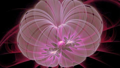 Цветок, круг, форма, свет, размытость