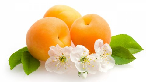 Фрукты, цветы, абрикосы, листья