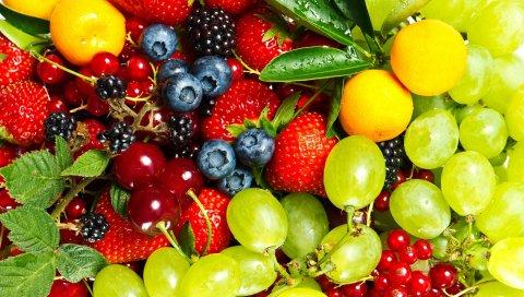 Смородины, клубника, вишня, ягоды, крыжовник