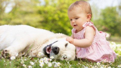 ребенок, малыш, девочка, трава, собака, игра