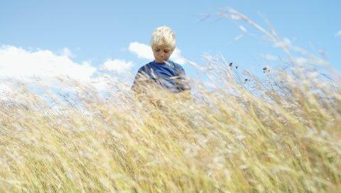 мальчик, поле, трава