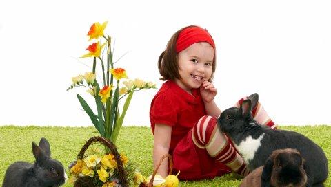 девочка, Пасха, кролики, корзины, нарциссы