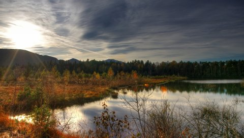 Озёра, озеро, лес, природа