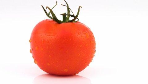 помидоры, белый фон, капли