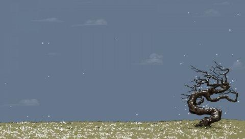 дерево, поле, трава, ветер, природа, искусство