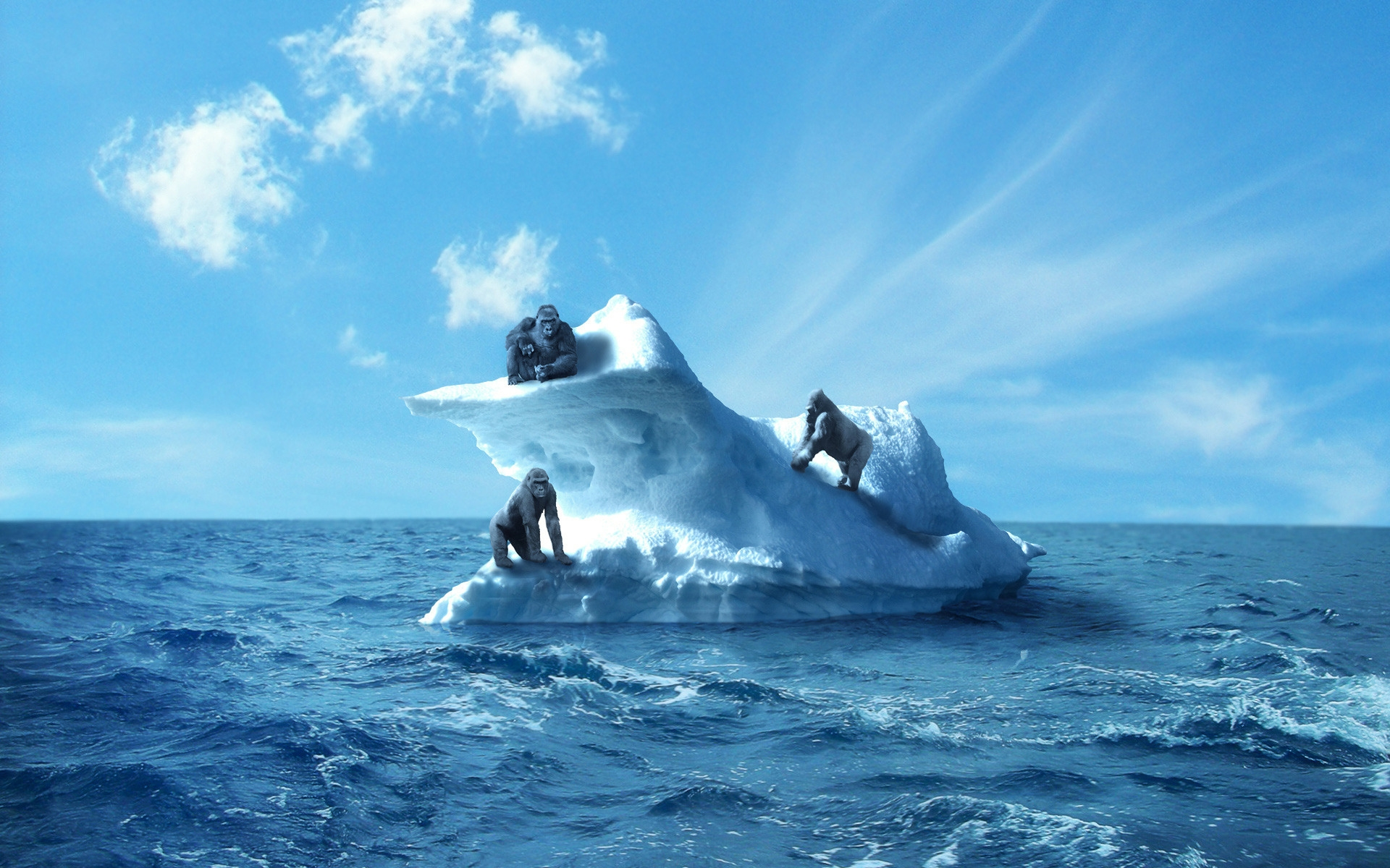 На рабочий стол картинки о море океане приключения