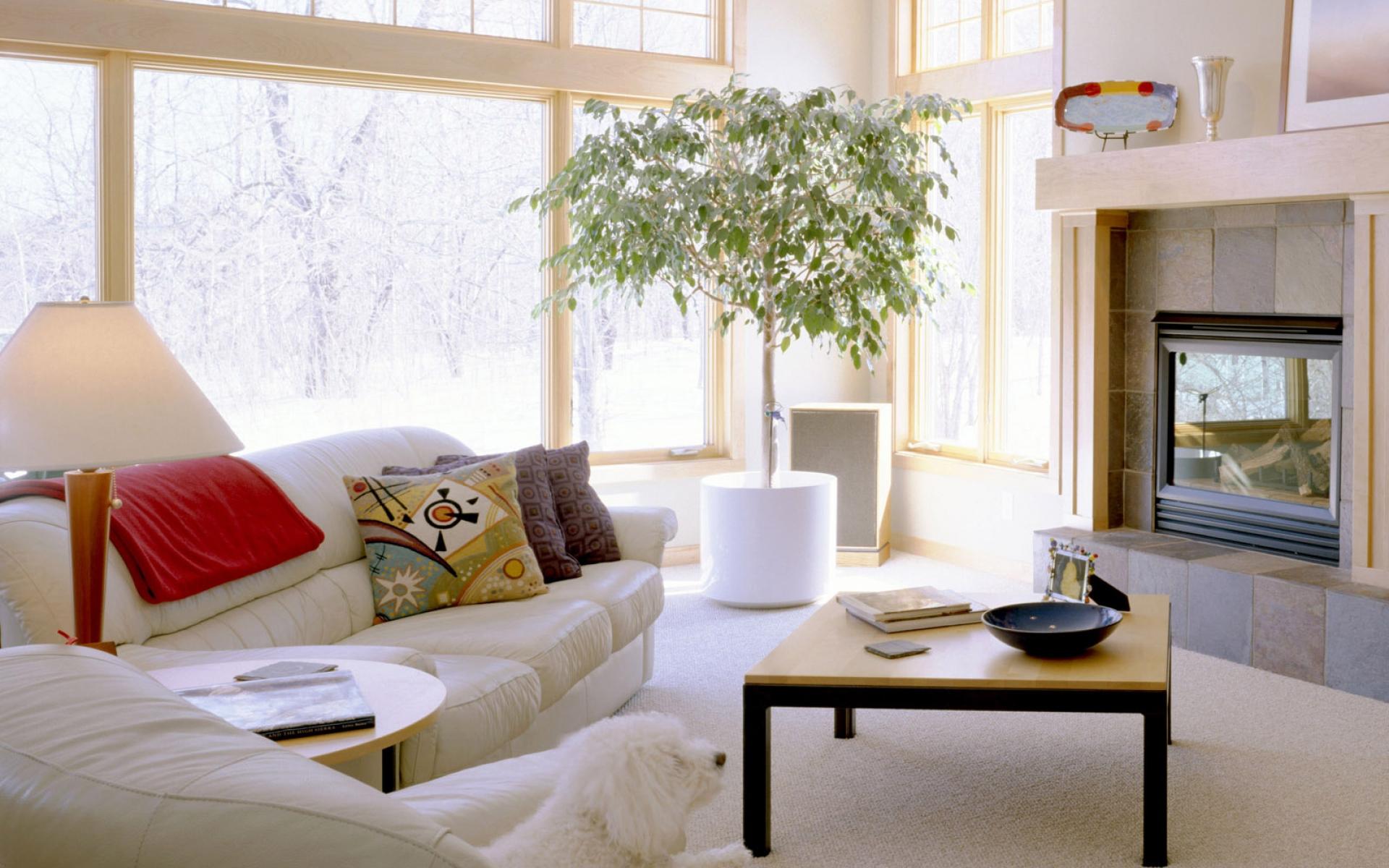 Картинки телевизор, диван, подушки, мебель, комфорт фото и обои на рабочий стол