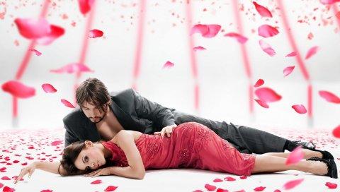 девушка, парень, розы, лепестки, романтичный
