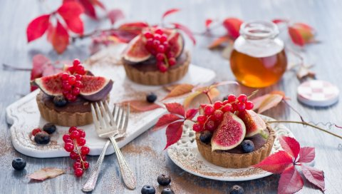 Еда, сладости, пирожные, выпечка, фрукты, ягоды, инжир, смородина, черника, мед, десерт