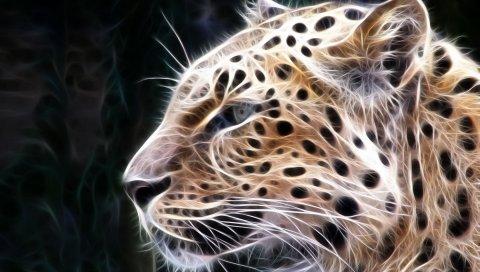 Леопард, свет, линии, свечение