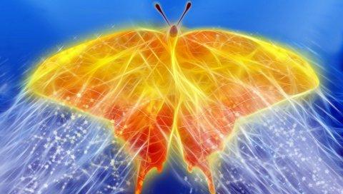 Бабочка, птица, точки, блеск