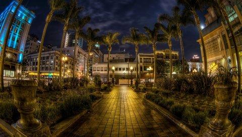 США, Сан - Диего, Калифорния, деревья, пальмы, ночь, тротуар, ВСД