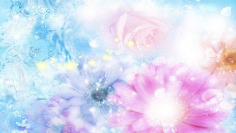 розовые, голубые, цветы, нечеткость,