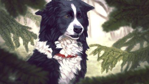 Искусство, собака, дерево, пихта, сосновые иглы, ошейник собаки