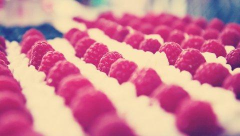Малина, сорта, ягода
