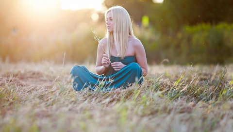 Поле, трава, сидя, солнечный свет
