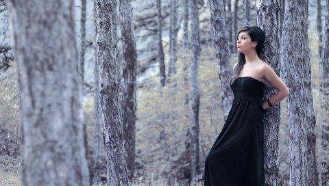 Девушка, платье, лес, фотосессия