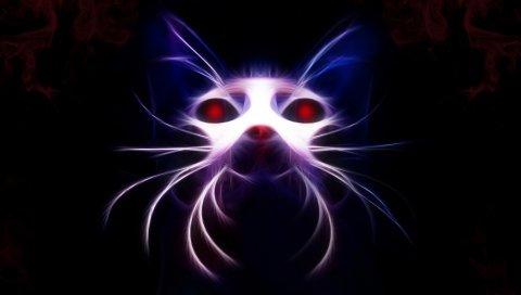 Кошка, морда, неоновая, светлая, темная