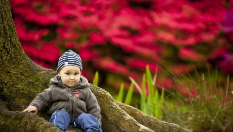 Ребенок, дерево, сидеть, одежда