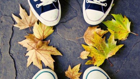 Ноги, кроссовки, листья, осень