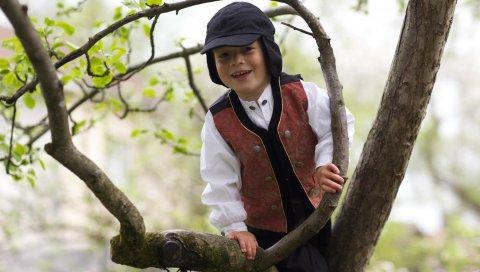 Ребенок, дерево, мальчик, улыбка, подняться