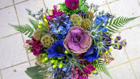 Травянистые звезды, цветы, букет, красивые, яркие