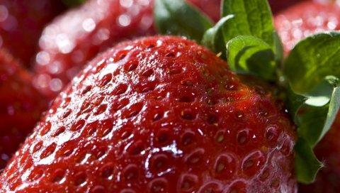 Клубника, ягоды, сладкий, зрелый, крупный план