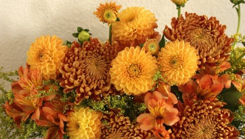 хризантемы, альстромерия, композиция, яркие
