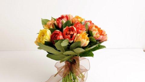 тюльпаны, цветок, лист, лук-узел, украшение