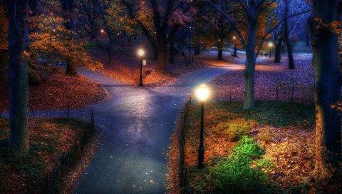 Парк, осень, город, огни, тротуар, тропы, листья