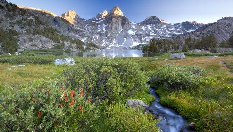 Горы, ручей, кусты, цветы, озеро, вершина, камни, свет