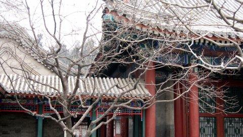 здание, фарфор, крыша, дерево