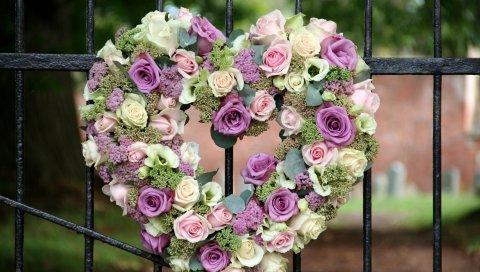 розы, лизиантуса рассел, цветы, забор, сердце, песня