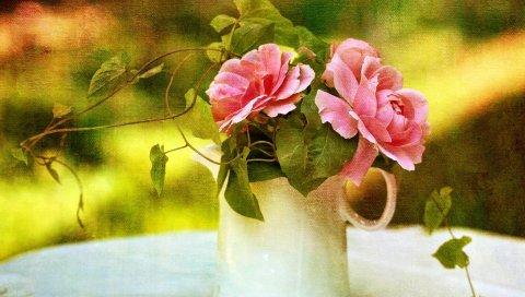 розы, вьюнок, кувшин, стол, фотография