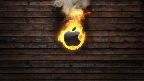 Огонь, пламя, дерево, фон, яблоко, mac