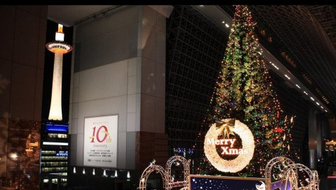 Рождественская елка, гирлянды, рождество, люди, тщеславие
