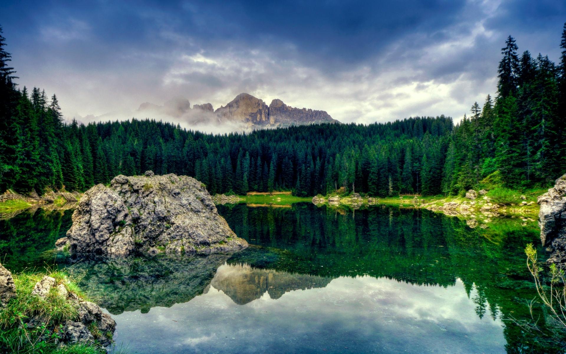 красивые картинки с лесом и водой настоящие фото можете даже расположить