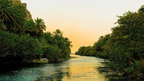 Река, тропики, растительность, кусты, деревья, небо, тишина
