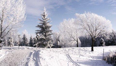 Зима, деревья, иней, лыжная трасса, следы, снег, небо, облака, подъем
